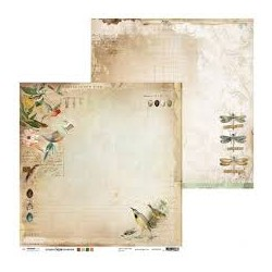 Paper ultimate scrap collection